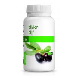 OLIVIER 120 Gélules