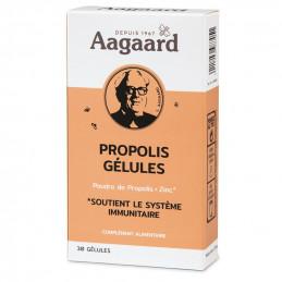GELULES 250 mg